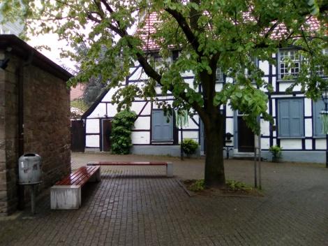 Der geplante Standort für den Sagenwald Haldenplatz. Foto: LRF/HAT